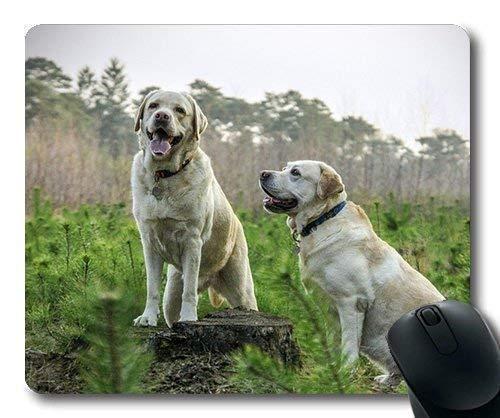 Mauspad für Gaming, individuelles Mauspad, Welpen, Dickes Mauspad, Labrador-Rassen, Hunde, Tiere, Hunde -