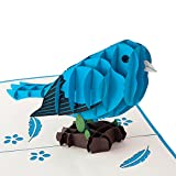"Kreatives Geschenk, 3D Geburtstagskarte ""Blauer Vogel"