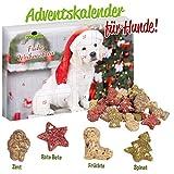 Image of Schecker Weihnachts-Geschenkbox + Adventskalender für Hunde 24 Tage bis Weihnachten, und jeden Tag gibt es eine kleine Knabberei!