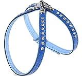 Garronda Hundegeschirr aus weichem Leder 624+ (Blau/Hellblau, L (45 cm))