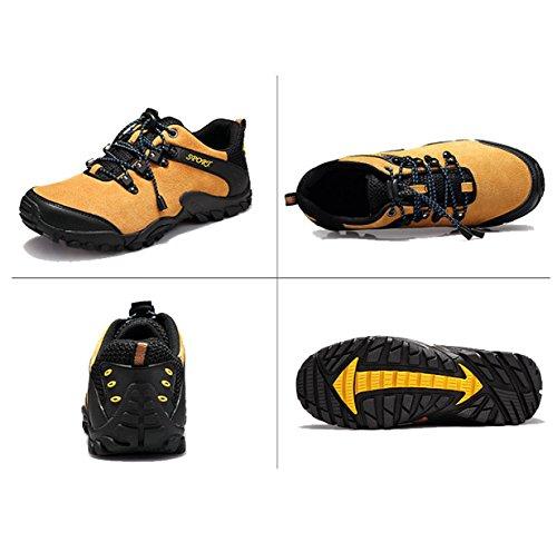 Chaussures De Randonnée En Plein Air Hommes Glisser Des Chaussures De Randonnée Multicolore Multi-taille Brown