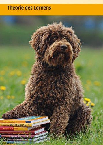 Hundeschule:  Verhalten formen mit dem Clicker - 6
