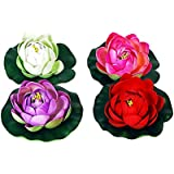 Orchard Floating Lotus Flower Red, White, Pink and Violet (Set of 4 )(K693 )
