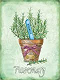 Rosemary Herbs Food & Drink Garden Home Kitchen Cooking Plant in Pot, old, vintage for Kitchen, Garden, Shed or Allotment Medium Metal/Steel Wall Sign