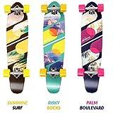 Physionics Longboard Skateboard im Design Palm Boulevard/ im Design Risky Rocks/ im Design Sunshine Surf (Sunshine Surf)