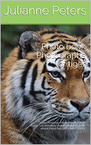 photo-book-photographs-of-tiger-tigers-amazing-photos-book-about-tigers-will-definitely-make-you-kno