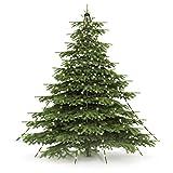 CHRISTmaxx 04273 LED-Lichter-Pyramide | Led Lichterkette für Tannenbaum/Weihnachtsbaum, Fahnenmast oder freistehend | 2 Meter, Indoor & Outdoor, spritzwassergeschützt nach IP44, grün