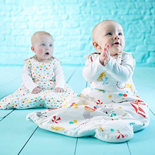 Gro AAA4133 Baby-Schlafsack, Design:Roll Up Tag und Nacht geeignet, 1.0/2.5 Tog, 2 Stück, mehrfarbig