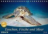 Tauchen, Fische und Meer (Tischkalender 2019 DIN A5 quer): Unterwasserimpressionen (Monatskalender, 14 Seiten ) (CALVENDO Tiere)