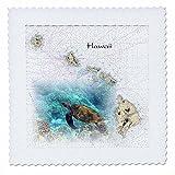 3dRose Print of Hawaii-Inseln Diagramm mit Sea Turtle,