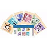 Gift Set of 2014 Glasgow XX Commonwealth Games Stamp Presentation Pack and PHQ Cards (Set of 6 Royal Mail Postcards) by Royal Mail Presentation Pack and PHQ Cards