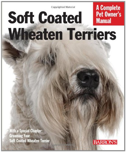 soft-coated-wheaten-terriers-everything-about-selection-care-nutrition-behavior-and-training-barrons