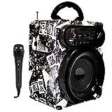 Lettori per Karaoke con Microfono Altoparlante Casse Acustiche Portatili Bluetooth USB Radio FM senza fili Scheda TF ricaricabile con telecomando (Negro)