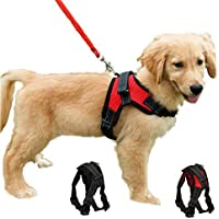 Dog Body Adjustable Harness for Vest/Comfortable Harness/Padded Harness with Handle and Hook (Small, Black)