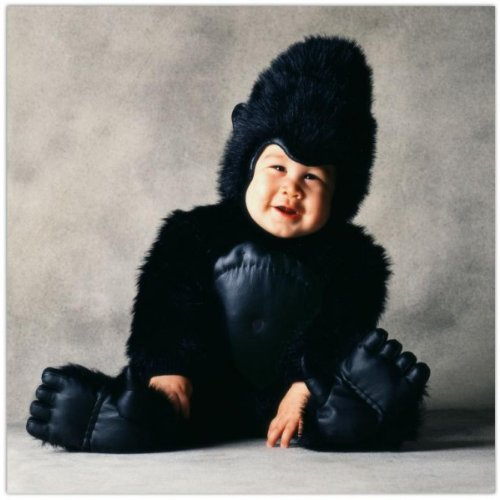 Kostüm Gorilla Baby (Gorilla Kostüm Tom Arma für Babys - 12-18)
