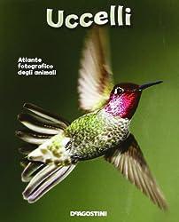 515efkOijDL. SL250  I 10 migliori libri sugli uccelli