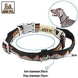 LOSY PET Nylon Hundehalsband, Hunde Halsband mit Haltegriff, Sicherheitsverschluss weich Verstellbare Halsband für mittlere/große Hunde - XL