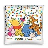 Disney Winnie Pooh Kissenbezug Kissenhülle 40x40cm