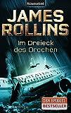 Im Dreieck des Drachen: Roman
