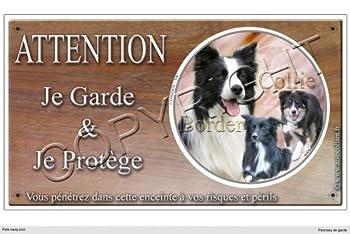 Panneau chien ou plaque Border-Collie- 20 cm