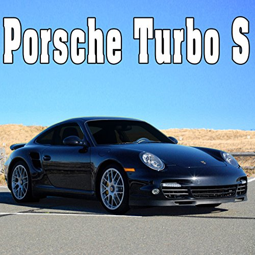 Porsche Turbo S, Internal Perspective: Window Lock Closed