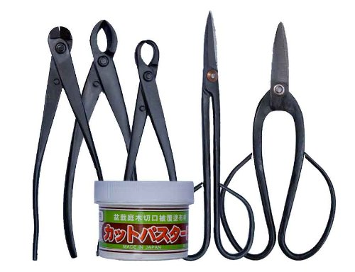 kit-de-cuidado-para-bonsai