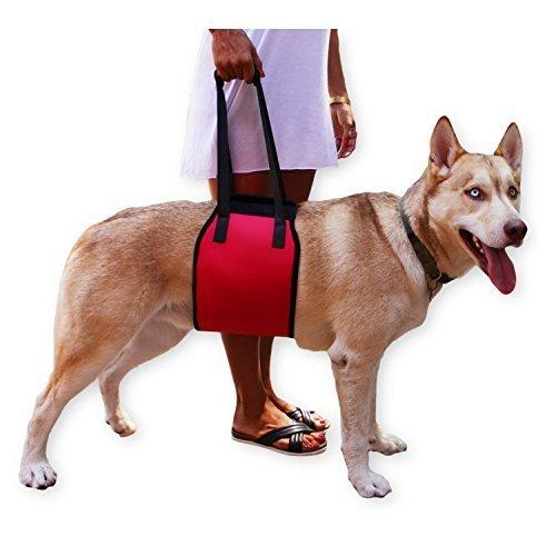 Lalawow Hund Aufzug Harness Soft-Dog Support & Rehabilitation Harness mit Griff Rehabilitation Eckzähne Hilfe Hilfe Aufzüge Ältere Hunde für junge Welpen -