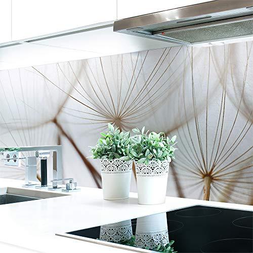 Küchenrückwand Löwenzahn Braun Premium Hart-PVC 0,4 mm selbstklebend - Direkt auf die Fliesen, Größe:220 x 51 cm