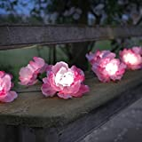 Smart Solar 1060251RP - Guirnalda con 10 rosas, 38 x 17 x 17 cm, color verde agua