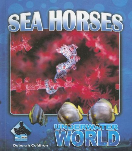 Sea Horses (Underwater World)