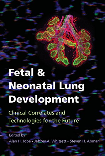 Fetal & Neonatal Lung Development: Clinical Correlates And Technologies For The Future (lung Growth, Development, And Disease) por Alan Jobe epub