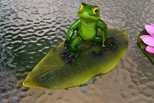 Frosch- hübscher Schwimmfrosch Surfer auf großem Blatt für den Teich - stabile Ausführung- wetterfest