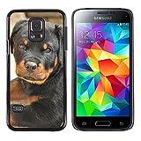 Hülle Case Schutzhülle Cover Premium Case // M00125385 Rottweiler Cucciola Dog Uma Süßes // Samsung Galaxy S5 MINI S