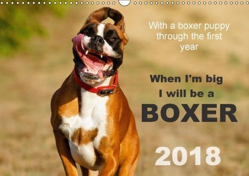 When I'm big I will be a Boxer / UK-Version (Wall Calendar 2018 DIN A3 Landscape): With a boxer puppy through the first year 2015 (Monthly calendar, ... [Kalender] [Apr 01, 2017] Mielke, Kerstin