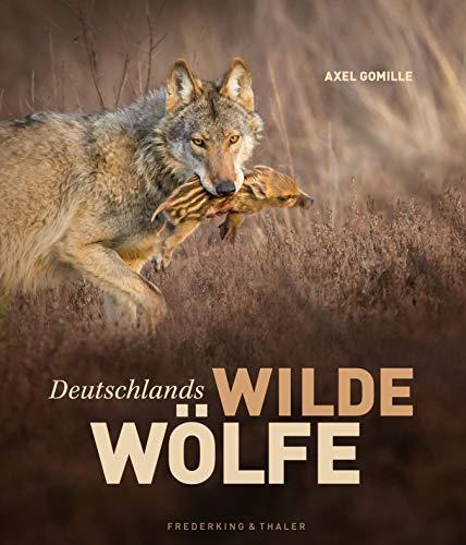Deutschlands wilde Wölfe: Jahr für Jahr wachsen die Bestände in Deutschland. Dieser Bildband zeigt Wölfe in freier Wildbahn und porträtiert die scheuen, faszinierenden Tiere.