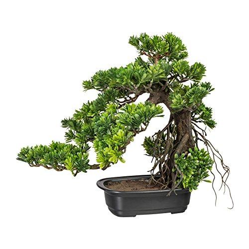 wohnfuehlidee Kunstpflanze Bonsai Podocarpus Grün, Inklusive Kunststoff-Schale, ca. 40×40 cm