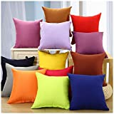 Kissenbezüge IHRKleid® Multiple Color Pillow Cases Sofa Cushions Pillowcases Back Office Car Bedroom Kissen Abdeckungen (50*50 cm, Coffee)