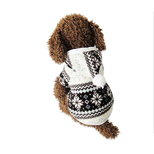 vestiti del cane per piccoli e grandi