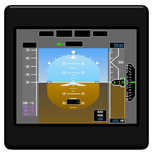 BizJet (R Aircraft Und Co)