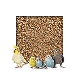 Kieskönig 10 kg Buchenholzgranulat Vogelsand Bodengrund Terrariensand Einstreu Terrariumsand Tiereinstreu