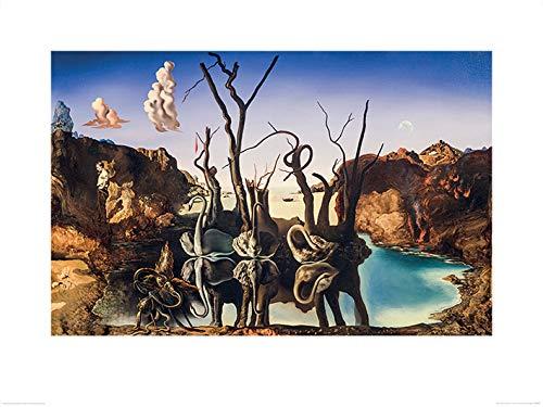 Salvador Dali - Swans Reflecting Elephants, Kunstdruck, 60 x 80 cm - Swans Reflecting Elephants Von Dali