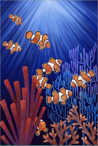 Posterlounge Hartschaumbild 60 x 90 cm: Clownfische von Ruta13 -