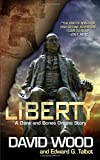 Liberty: A Dane and Bones Origins Story: Volume 5 (Dane Maddock Origins)