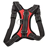 Front Range No-pull Dog Harnesses Review and Comparison
