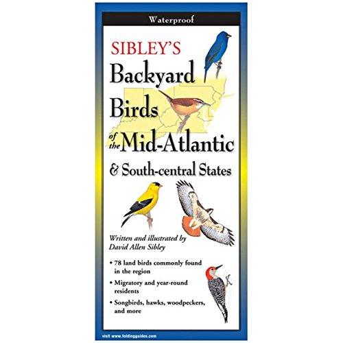 Faltführung Sibley Backyard Birds New England & Northern New York