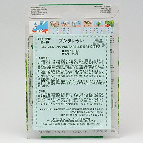 Seeds of Italy Ltd 40/46