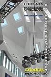 Cielorrasos. Tecnologías húmedas de terminación (Cátedras Arquitectura y Construcción online. Serie Construcciones nº 23)