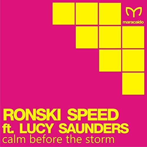 Calm Before the Storm (Origina...