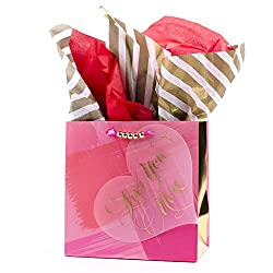 Hallmark Signature Medium Valentines Day Gift Bag with Tissue Paper (Love On Heart, 9.6 by 7.7 by 4.3 Inches)