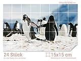 Graz Design 761690_15x15_60 Fliesenaufkleber Schnee - Pinguine für Kacheln | Wand-Deko für Bad/Küchen-Fliesen (Fliesenmaß: 15x15cm (BxH)//Bild: 90x60cm (BxH))